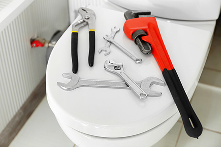 Toilet Installation and Repairs